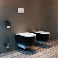 Space Saving Wall-hung Toilet